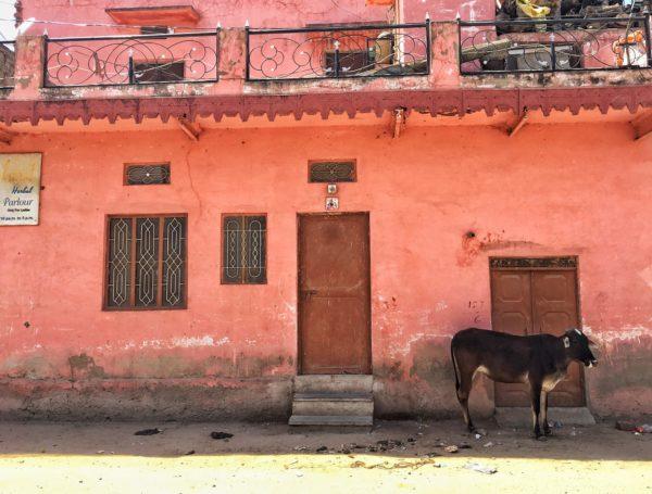 les rues de Pushkar