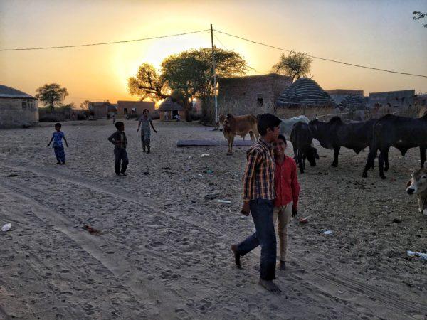 que faire dans le Rajasthan