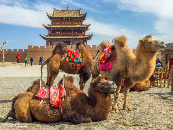Coups de coeur en Chine de blogueurs voyage, la route de la soie