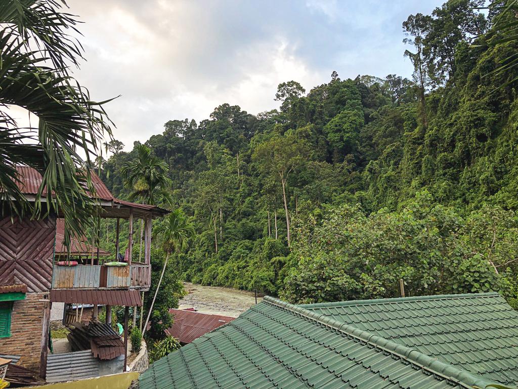 Séjourner dans la jungle à Bukit Lawang, Sumatra